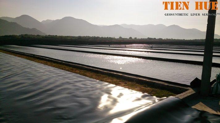 công ty tiến huệ cung cấp bạt lót ruộng muối tiêu chuẩn, chất lượng cao và giá cả cạnh tranh