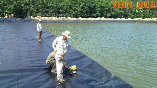 Màng chống thấm HDPE lót đáy và mái hồ nuôi thủy sản