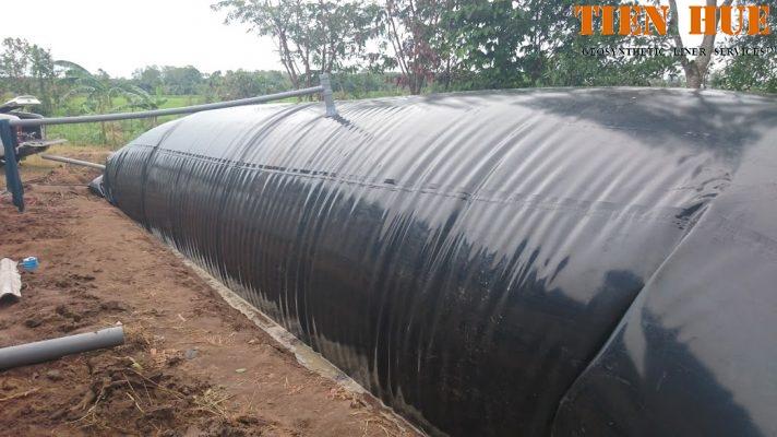 thi-cong-ham-biogas-nang-luong-xanh-trong-nganh-chan-nuoi