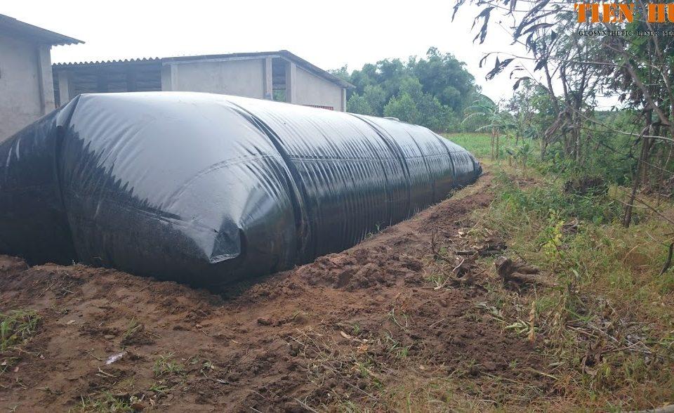 cac-giai-doan-xu-ly-nuoc-thai-chan-nuoi-trong-ham-biogas-hpde